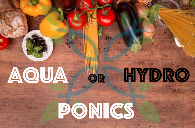 What is the difference between hydroponics and aquaponics?